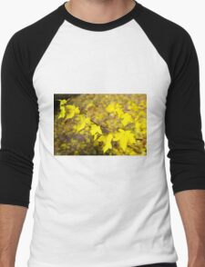 Little branch of maple with small yellow leaves close-up Men's Baseball ¾ T-Shirt