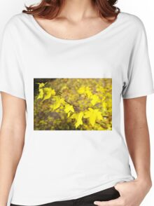 Little branch of maple with small yellow leaves close-up Women's Relaxed Fit T-Shirt