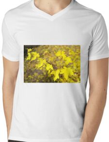 Little branch of maple with small yellow leaves close-up Mens V-Neck T-Shirt