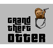 Grand Theft Otter Photographic Print