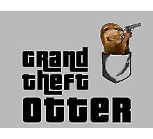 Grand Theft Otter Photographic Print