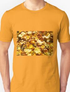 Overhead view on leaves of linden on the lawn T-Shirt