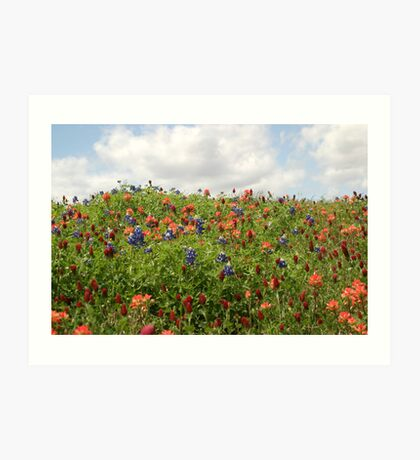 Puffy Clouds And Flowering Hills Art Print