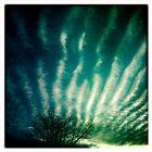Sea Shell Sky by Mary  Sherman