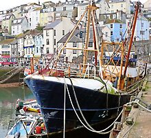 Brixham harbour  by Woodie