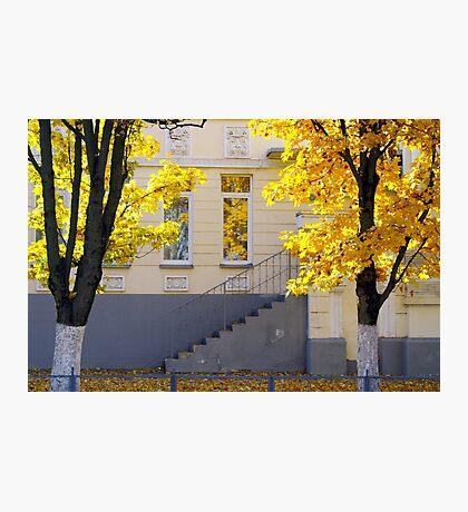 Urban autumn scene Photographic Print