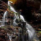 Rickette's Glen falls - 900 by ©  Paul W. Faust