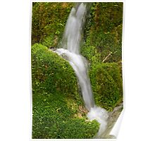 Water flowing over green moss. Poster