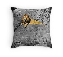 Guarding The Valley Throw Pillow