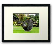 Fletcher Jones gardens Framed Print