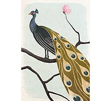 a peacock with pink flower Photographic Print