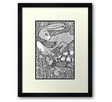 The Tortoise and the Hare Framed Print
