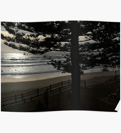 Early Risers - Port Macquarie Poster