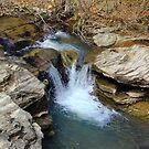 Little Falls On Midland Creek by Carolyn Wright