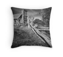 Fitzgerald Hut Throw Pillow