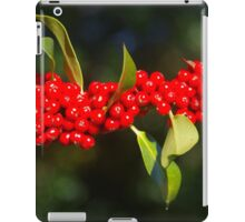 Herald Of A Harsh Winter iPad Case/Skin