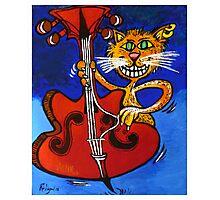 BASSY CAT Photographic Print