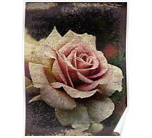 Fantaisie Rose Poster