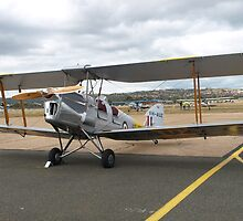Tiger Moth Aircraft by Geoffrey Higges