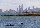 Melbourne City from Brighton Beach by Maree Cardinale