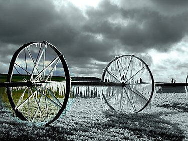 Focal Black and White *ICE WHEEL*~! by Brenda Dahl