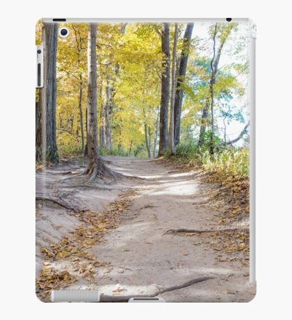 Path of Least Resistance iPad Case/Skin