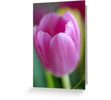 Kind & Gentle III Greeting Card