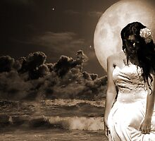 Fantasy Moonlight Beach Bride by Paul  Donaldson