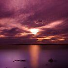 Pinky Point, Ceduna, South Australia by Julia Harwood