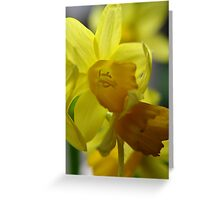 Prosperous perspectives Greeting Card