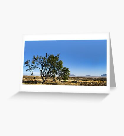 The Only Tree.. Greeting Card