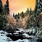 Brice Creek Sunrise And Snow by Charles & Patricia   Harkins ~ Picture Oregon