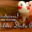 2012 Rubber Ducks Feature Banner by Susana Weber