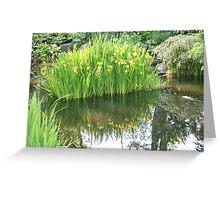 Daffodil Reflection at Fitzroy Gardens Greeting Card