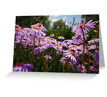 do you see the bumble bee? Greeting Card