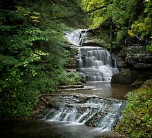 Robert Treman State Park by Jeff Palm Photography