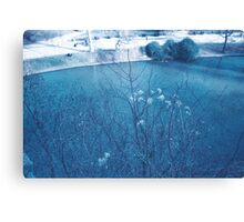 nature in Paris - buttes chaumont Canvas Print