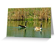 Two on a Pond Greeting Card