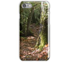 Ramsey Cascades Trail - Great Smoky Mountains National Park, Tennessee iPhone Case/Skin