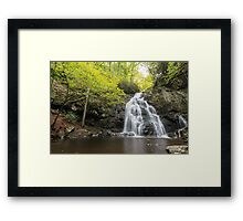 Spruce Flat Falls - Great Smoky Mountains National Park, Tennessee Framed Print