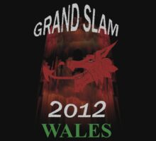 Wales Grand Slam 2012 03 Kids Clothes
