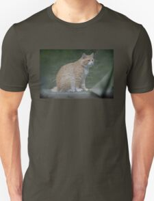 Marvelous Max The Marmalade Cat T-Shirt