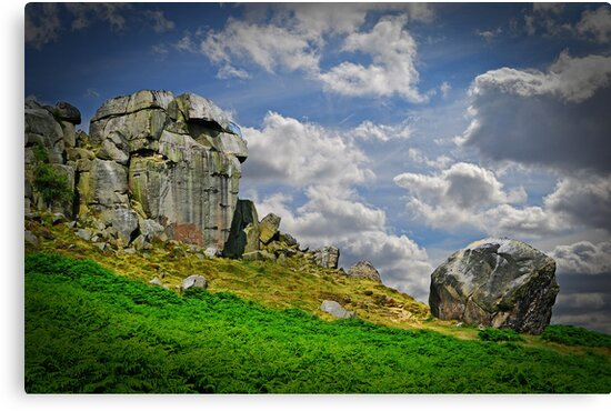 The Cow and Calf by Colin Metcalf