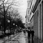 The Streets Of Vienna by bekkalily