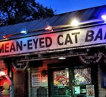 The Mean Eyed Cat by SuddenJim