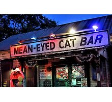 The Mean Eyed Cat Photographic Print
