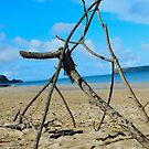 Sticks in Stones by Johnathan Bellamy
