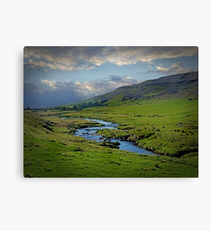 Meandering Canvas Print