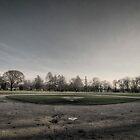 Field of Dreams by jrwyatt