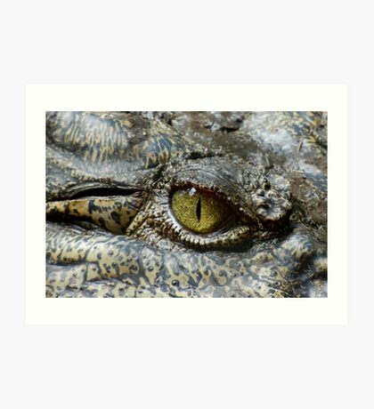 Scary Yellow Eye of Crocodile Art Print